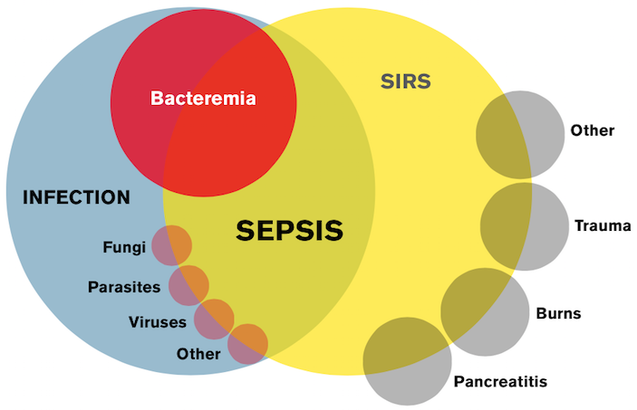 Sepsis Mimics - Emergency Physicians Monthly