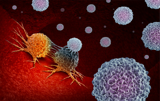 Cancer immunotherapy is a therapy technique involving or using certain parts of the immune system of the patient.